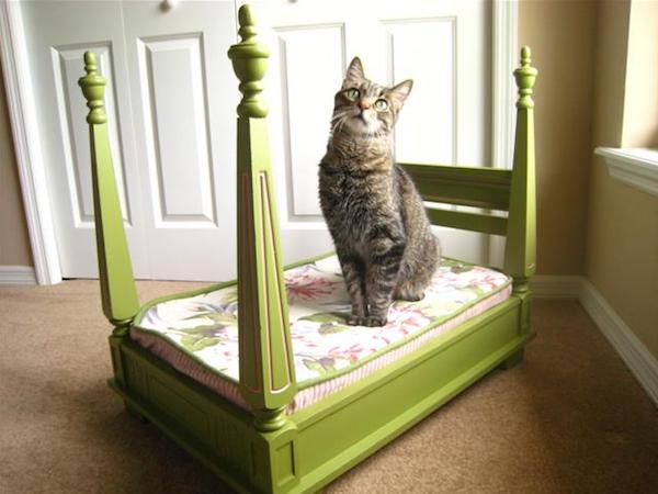 Выкройка лежанки для кошки своими руками фото