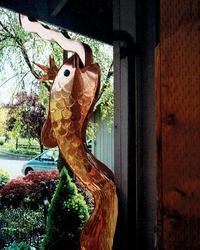 142_copperfish2