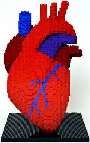 Heart1df