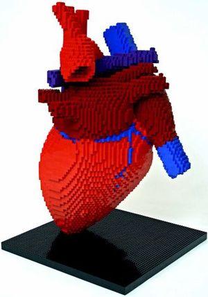 Heart3fe