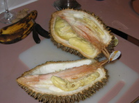 3durian3
