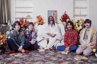 Beatleshippie